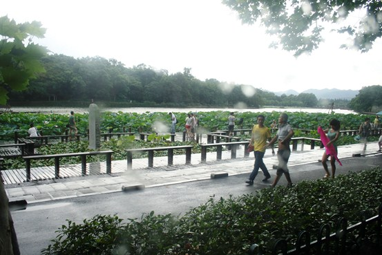 _MG_7251 Taman Teratai di Hongzhou - Copy