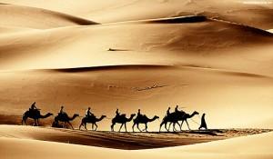 padang gurun