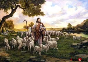 yesus sang gembala 2