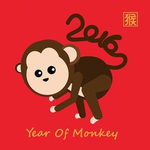 banner monyet
