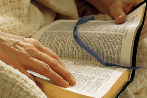 Person reading Bible