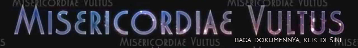 misericordiae-vultus-banner