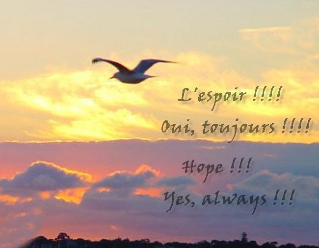 harapan 1