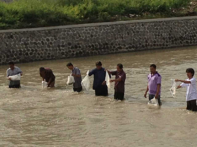 Growing a Life - Tebar Benih Ikan 200.000 ekor ikan nila di Banjir Kanal Barat, Semarang