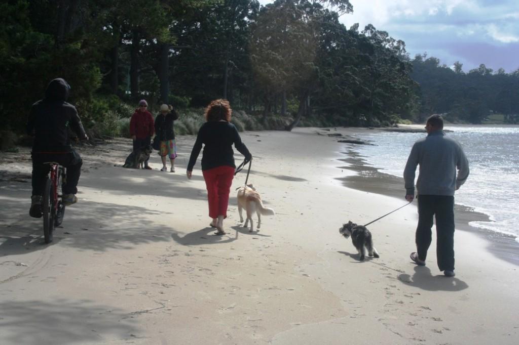 Esperance Bay pejalan kaki bersama anjingnya