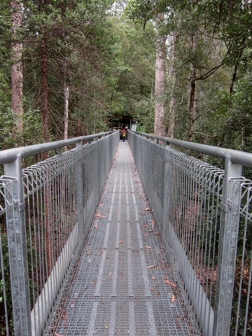 Tahune Forest AirWalk 4 ok