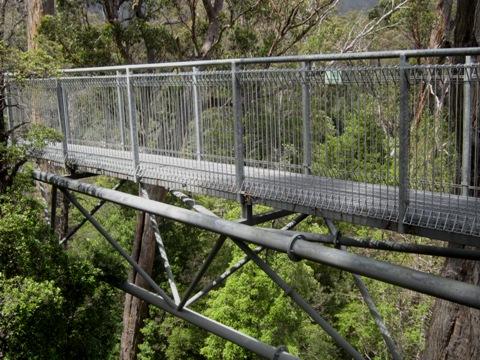 Tahune Forest AirWalk ujung jembatan 3 ok