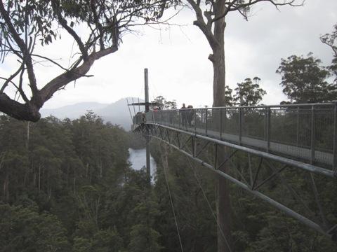 Tahune Forest AirWalk ujung jembatan ok