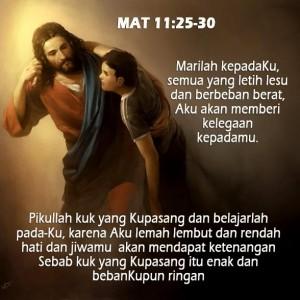 Mat11_25-30