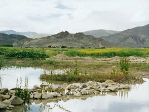 Tibet soil by China Org