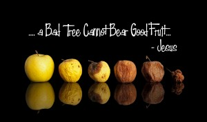 buah buruk by providence