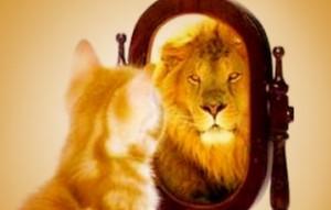 takut by entrepreneur