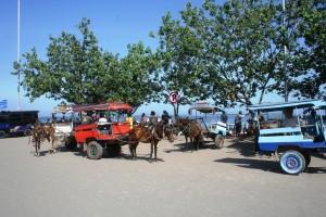 Cikar cidomo di Pelabuhan Bangsa Lombok